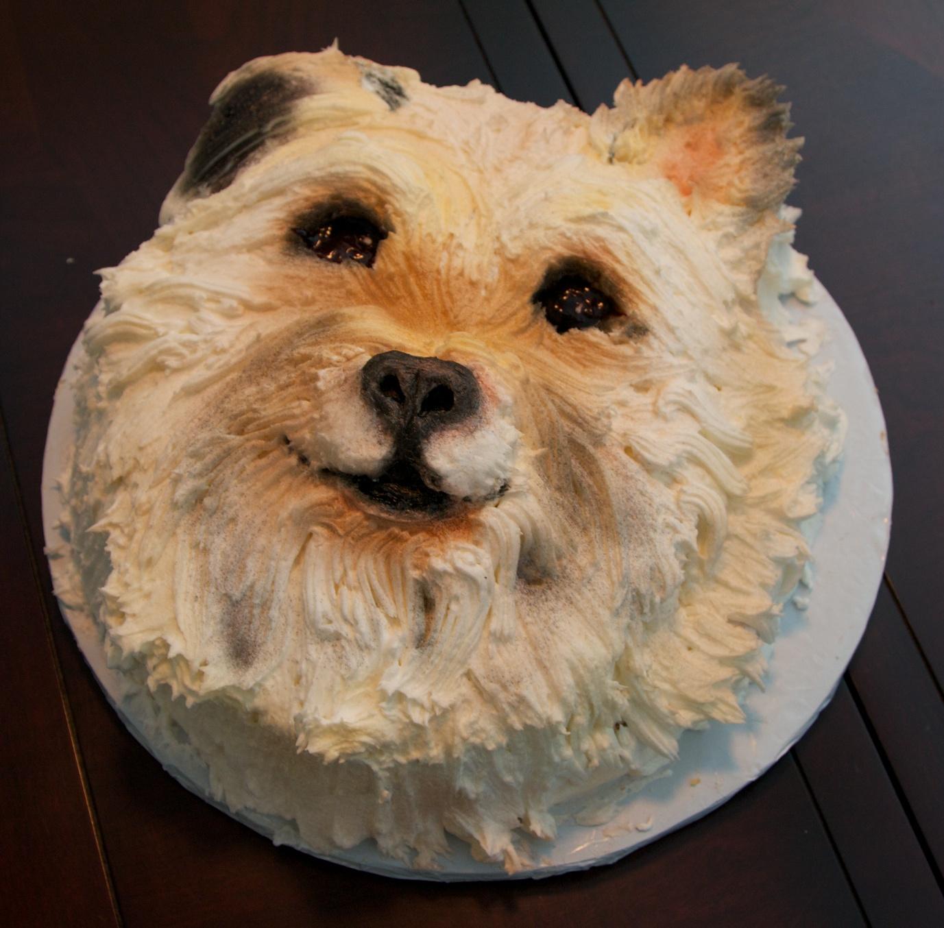 The Cutest Birthday Cake Ever Sweet Sensibility
